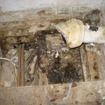 Years of a leaking soil pipe caused major structural damage that had to be replaced
